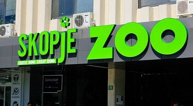 Погледнете како животните во скопската зоолошка ја пречекаа есента