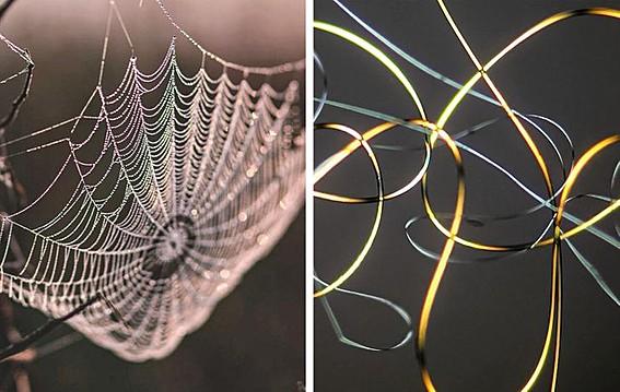 Пајакова мрежа