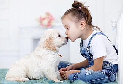 Домашни миленици - најдобри пријатели за цел живот